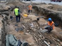001 Arheoloogilised uuringud Toris. Foto: Urmas Saard