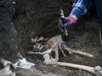 008 Arheoloogilised uuringud Toris. Foto: Urmas Saard