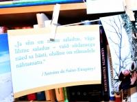 009 Ena Mets Sindi Linnaraamatukogus. Foto; Urmas Saard