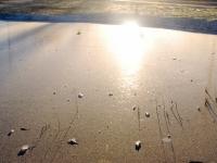 001 Õhukese jääga kaanetunud tiik Sindis Foto Urmas Saard