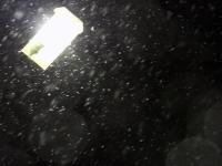 001 Esimene lumesadu Sindis. Foto: Urmas Saard