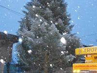 001 21. nov 2014 sai lumine Pärnu jõulupuu Foto Urmas Saard