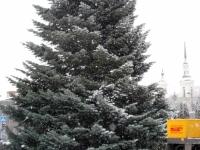 003 21. nov 2014 sai lumine Pärnu jõulupuu Foto Urmas Saard