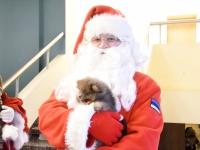 010 Jõuluvanade konverentsi päeva teine pool Kadrinas. Foto: Urmas Saard