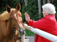 004 Linda Tikku ratsahobuse juures