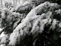 010 Lumine Sindi keskpäeva paiku. Foto: Urmas Saard