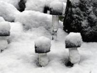 012 Lumine Sindi keskpäeva paiku. Foto: Urmas Saard