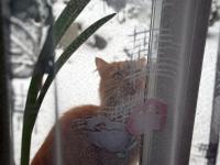 001 Minnie akna taga Foto Urmas Saard