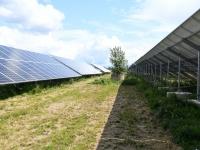 049 Paikre päikesepargi avamine Pärnus. Foto: Urmas Saard