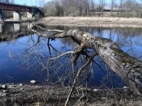 009 Pärnu jõgi Sindi silla kohal pärast paisu mahavõtmist. Foto: Urmas Saard