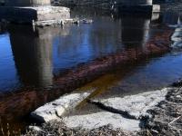 012 Pärnu jõgi Sindi silla kohal pärast paisu mahavõtmist. Foto: Urmas Saard