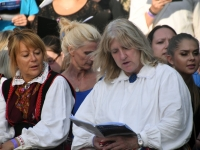 055 Seitsmes Vaba Rahva Laul Paides. Foto: Urmas Saard