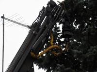 002 Sindi sotsiaalkeskuse ette toodi jõulupuu. Foto: Urmas Saard