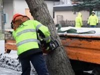 011 Sindi sotsiaalkeskuse ette toodi jõulupuu. Foto: Urmas Saard