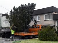 014 Sindi sotsiaalkeskuse ette toodi jõulupuu. Foto: Urmas Saard