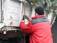 017 Sindi sotsiaalkeskuse ette toodi jõulupuu. Foto: Urmas Saard