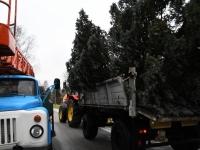 018 Sindi sotsiaalkeskuse ette toodi jõulupuu. Foto: Urmas Saard