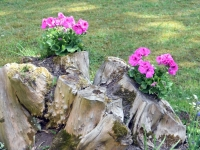062 Sintlased kolme valda külastamas. Foto: Urmas Saard