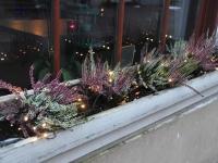 012 Talvevalguse promenaadil ja jõuluaatriumis. Foto: Urmas Saard