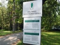 003 Toila-Oru kaitsealal. Foto: Urmas Saard