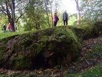 011 Toila-Oru kaitsealal. Foto: Urmas Saard