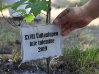 049 Tule Tulemine Vaskräämas. Foto: Urmas Saard