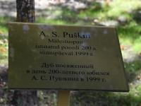 014 Uuenenud Tammsaare kool. Foto: Urmas Saard