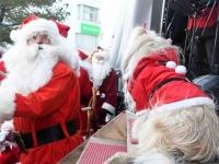013 XVIII Ülemaaline Jõuluvanade konverents jõudis Pärnusse. Foto: Urmas Saard