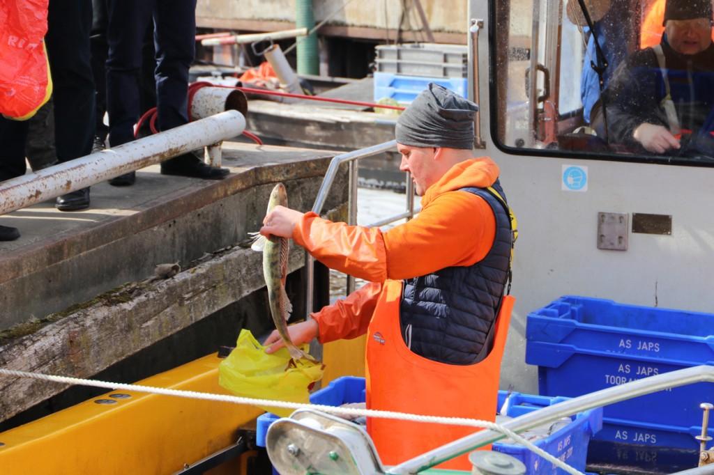 Avatud kalasadamate päeval Pärnus Japsi kalasadamas