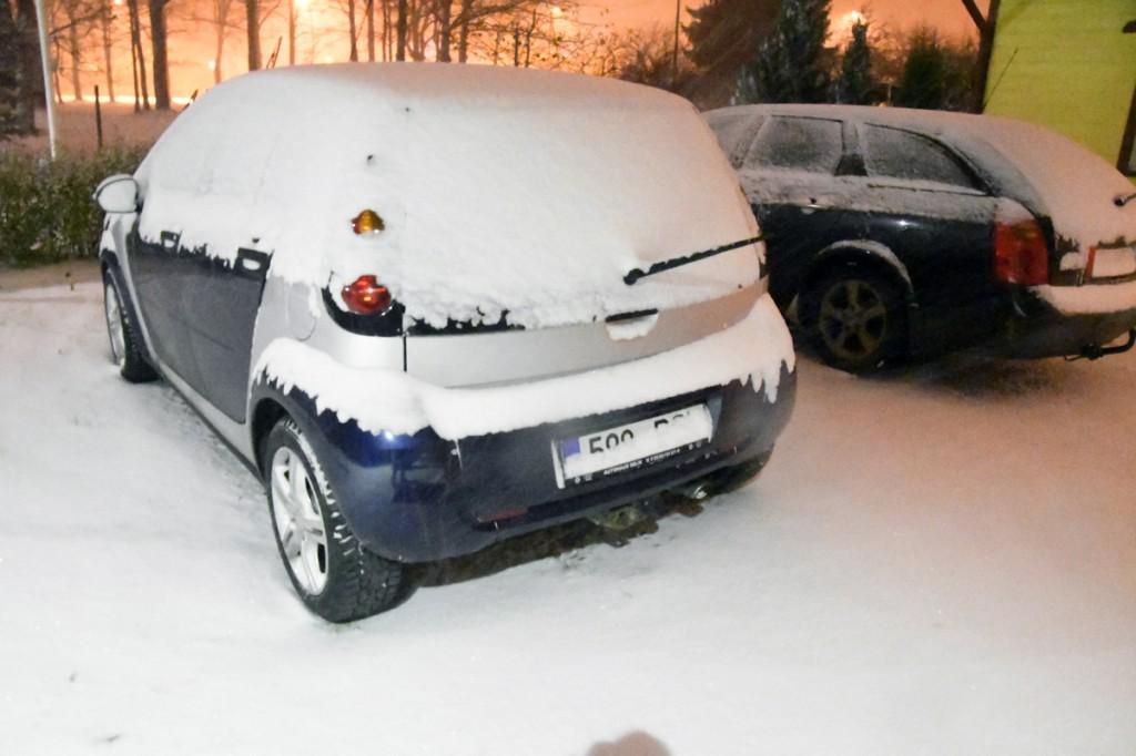 Esimene lumesadu Sindis Foto Urmas Saard