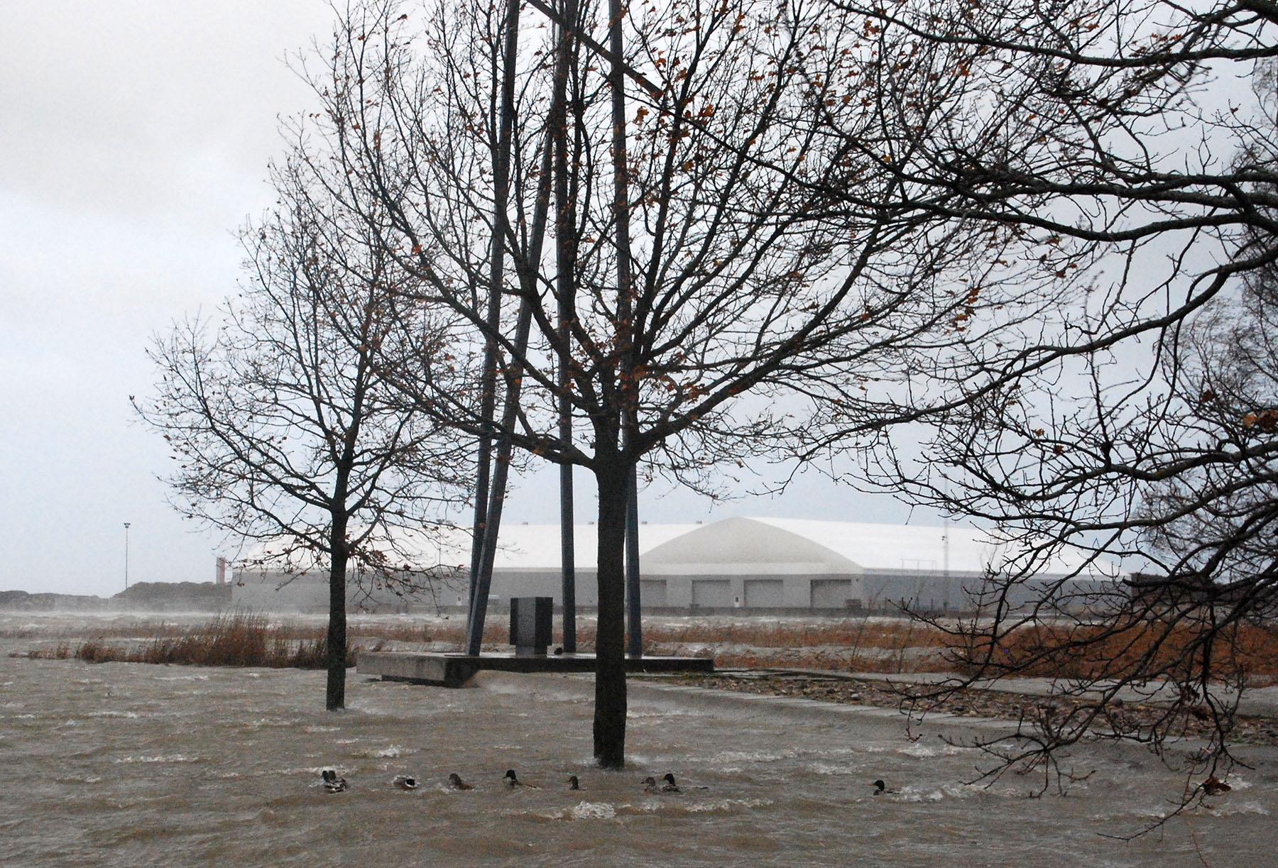 Estonia katastroofi ohvrite mälestusmärk Pärnus 2013. aasta 29. oktoobri tormisel päeval. Foto Urmas Saard