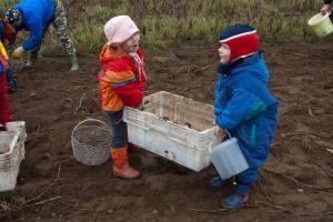 Fotomeenutus kahe aasta tagusest Jaanipeebu kartulipäevast. Foto: picasaweb.google.com