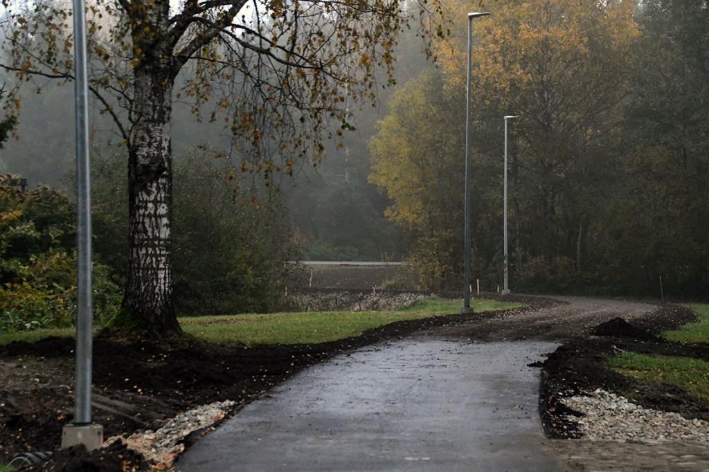 Lõik uut kergliiklusteed Sindi linna roheluse keskel Foto Urmas Saard