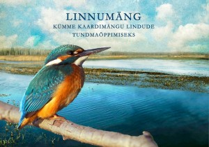 Linnumangu_kaas