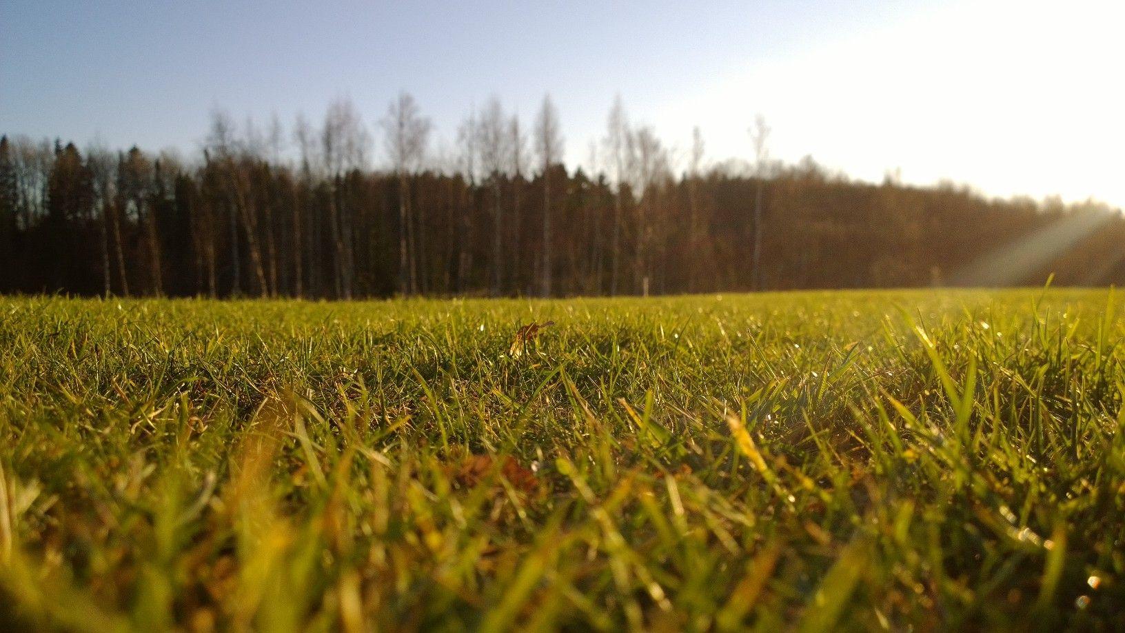 Mardipäeva päikesega Kadripäeva poole. Foto: Kylauudis.ee