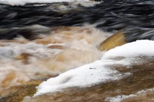 Pandivere kõrgustikul asuvast Porkuni järvest alguse saav Valgejõgi Foto Urmas Saard