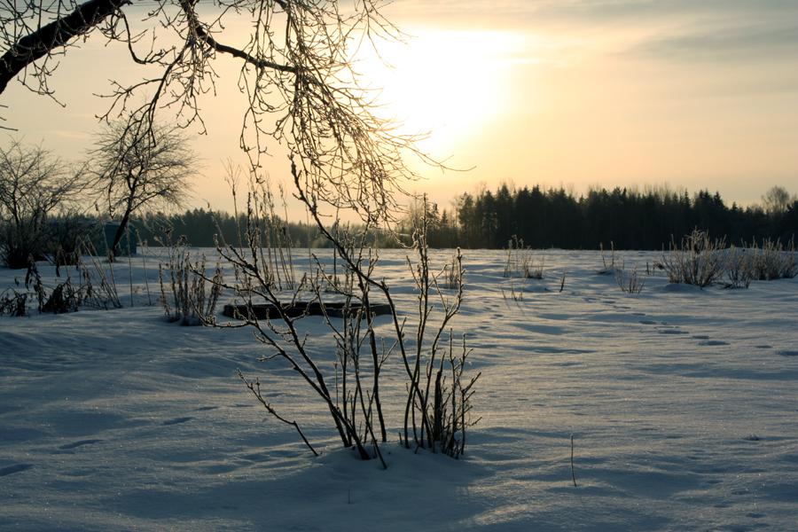 Pastellidega talvevalgusesse. Foto: Aare Puht