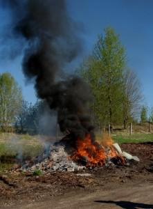 Prügist, mida põletame lõkkes, tekivad ohtlikud ained, mida hingavad sisse inimesed ja loomad.