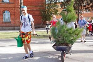 Sindi gümnaasiumi abituriendid lähevad puud istutama Foto Urmas Saard