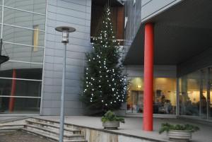 TÜ Pärnu kolledž Foto Urmas Saard