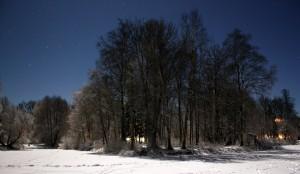 Tähesära ja lumehelk teevad vastastikku silma. Foto: Aare Puht