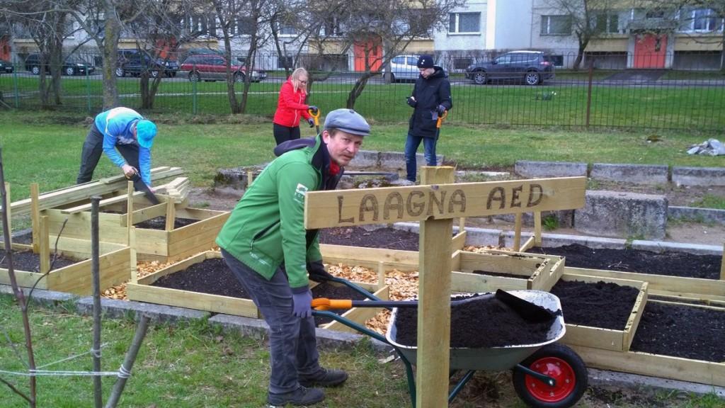Teeme Ära talgud Laagna kogukonnaaias