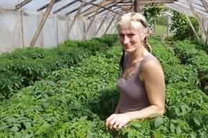 Trolla Jaana kasvatas 30 eri sorti tomatitaimi. Harju Ülle pilt.