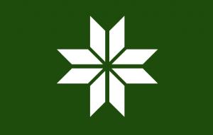 Võro_lipp