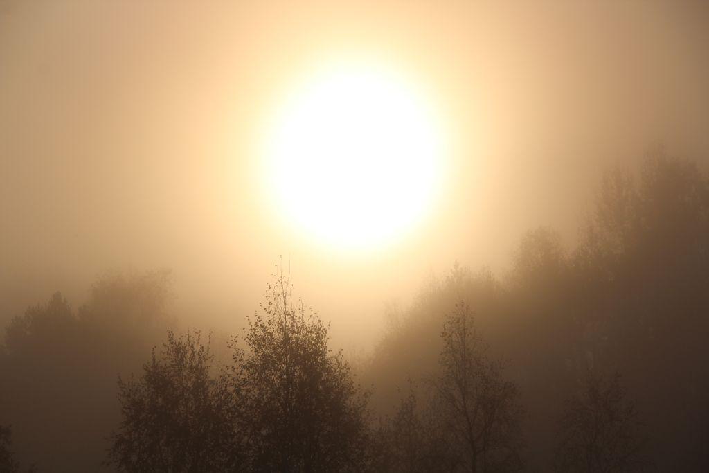 Uusaasta päike ärkab udust. Foto: Kylauudis.ee